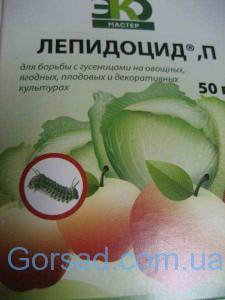 lepidocid