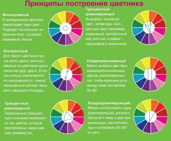 Принципы построения цветника