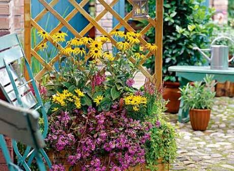 шпалера с растениями в зоне отдыха