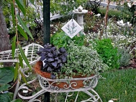 ландшафтная композиция с ампельными растениями
