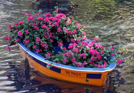 прекрасная идея: цветник в пришвартованной лодке