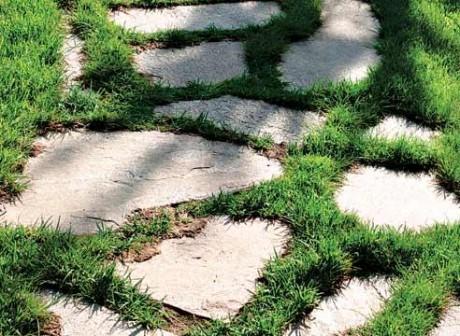 каменные плиты с заросшими стыками