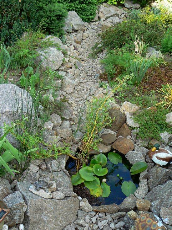 В дождливое время года каменный водоем может ненадолго превратиться в реальный