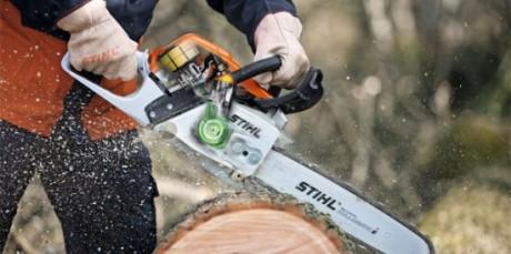 Раскряжевка ствола дерева