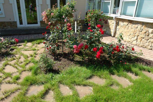 Оригинальный дачный цветник с кустовыми розами