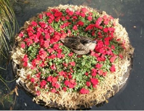 миниатюрная клумба в форме гнезда с керамической птицей