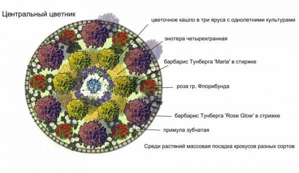 Схема центральной клумбы