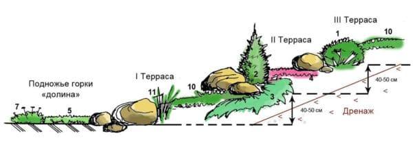 Террасированный альпинарий