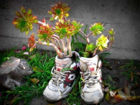 цветы в детских сапожках