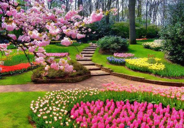 Клумбы в саду